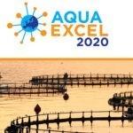 AQUAEXCEL 2020 – проект який дає можливість проводити експериментальні випробування